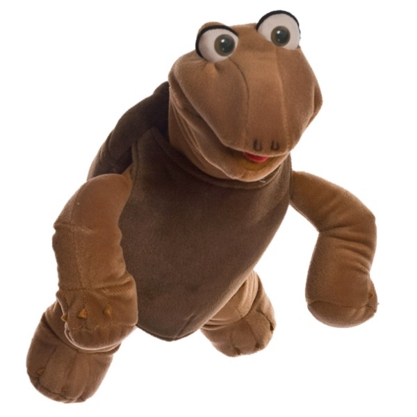 kl. Sammy Schildkröte