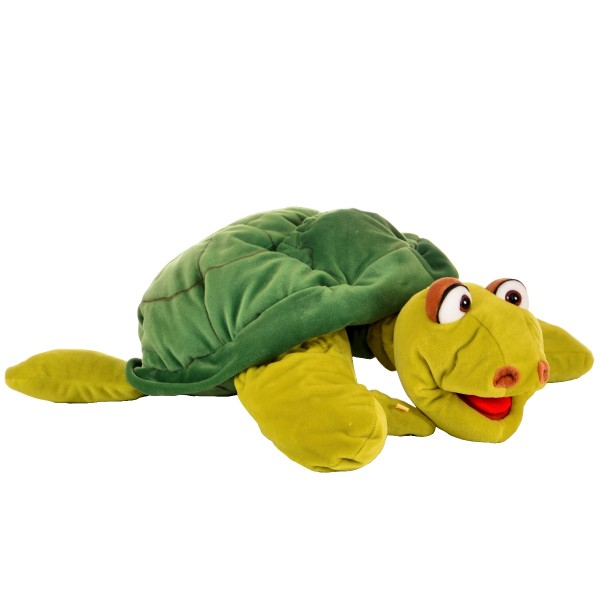 Aristoteles gr. Schildkröte